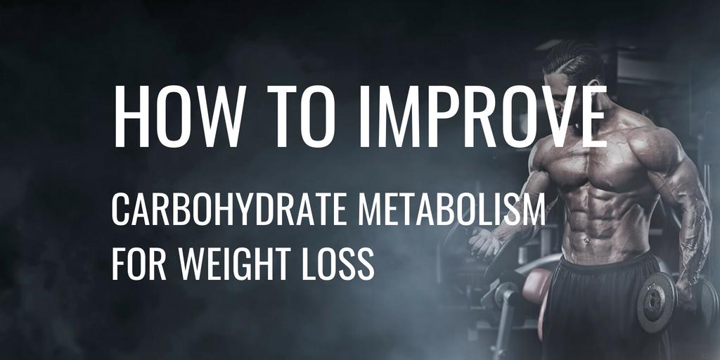 Carbohydrate Metabolism Header