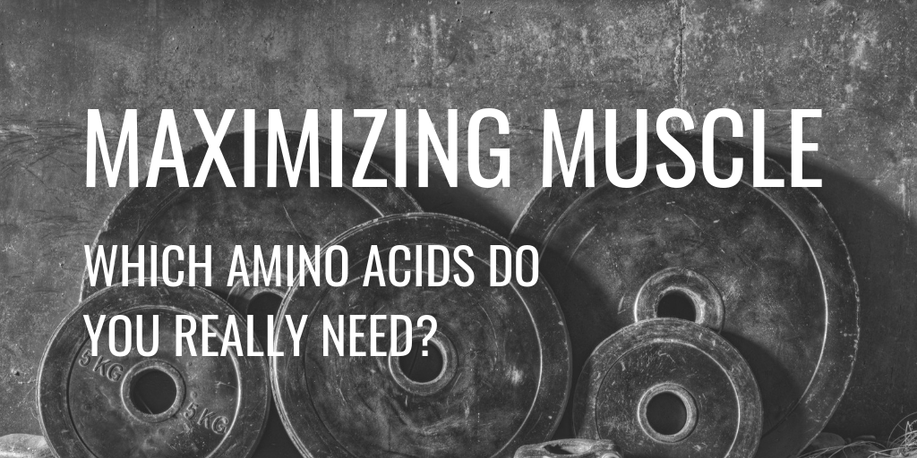 Muscle Mass Amino Acids Header
